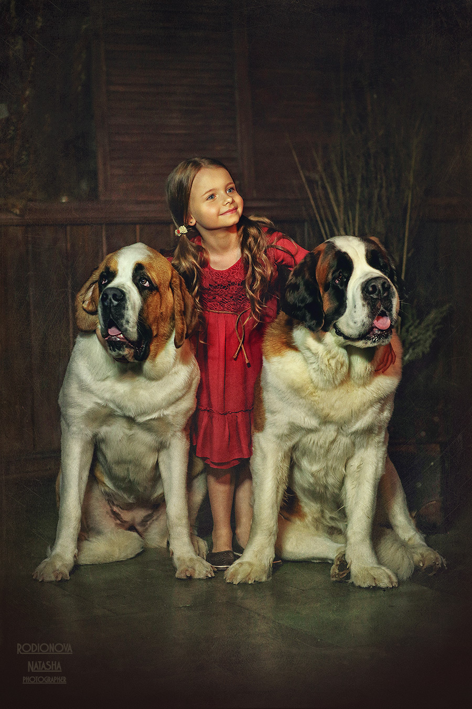 Сенбернары и дети фото